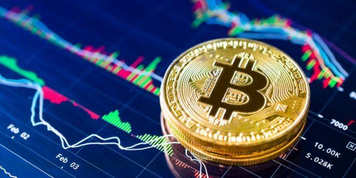 Francesca fialdini investe su bitcoin