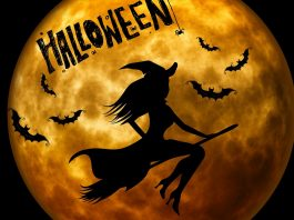 Halloween-parma